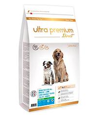 ultra premium direct chihuahua